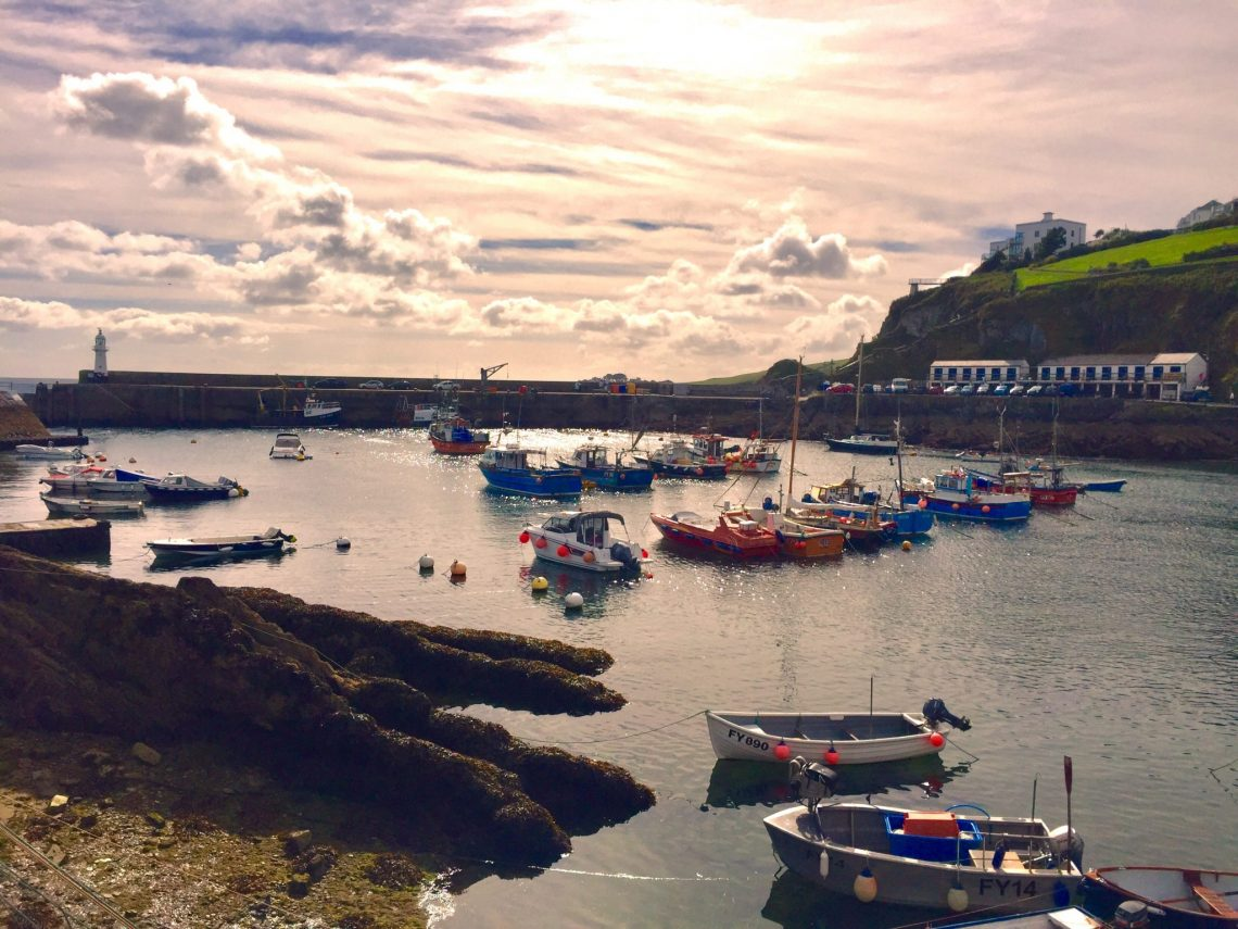 Mevagissey by Louise Dale